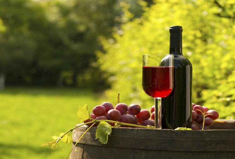 WINE TASTING AT YORK WINERY