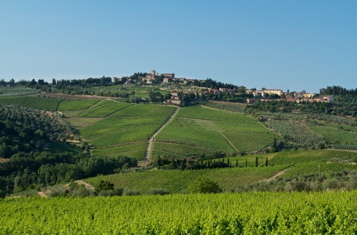 3-DAY JAUNT TO ITALY'S RENOWNED BOLGHERI WINE REGION IN ITALY