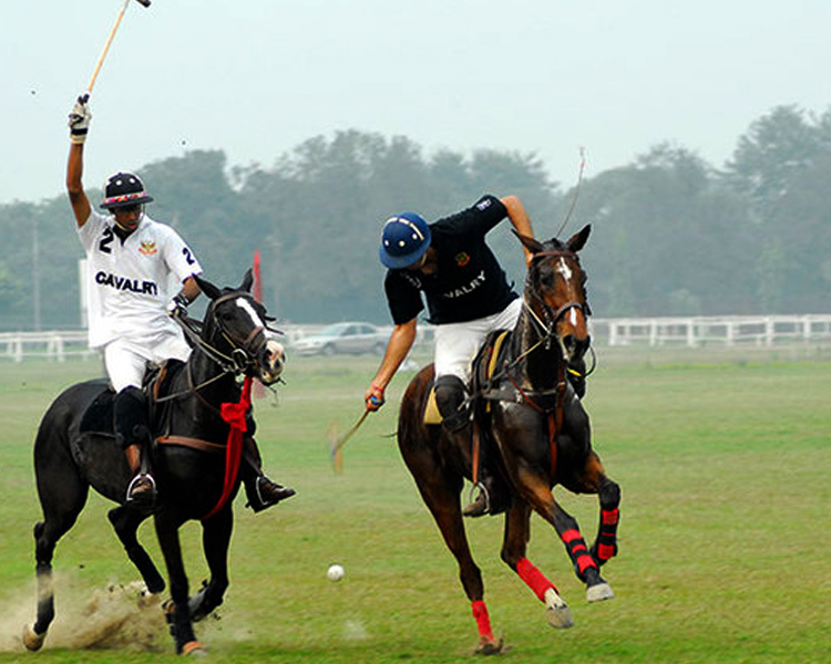 INTRODUCTION TO HORSE RIDING AND POLO