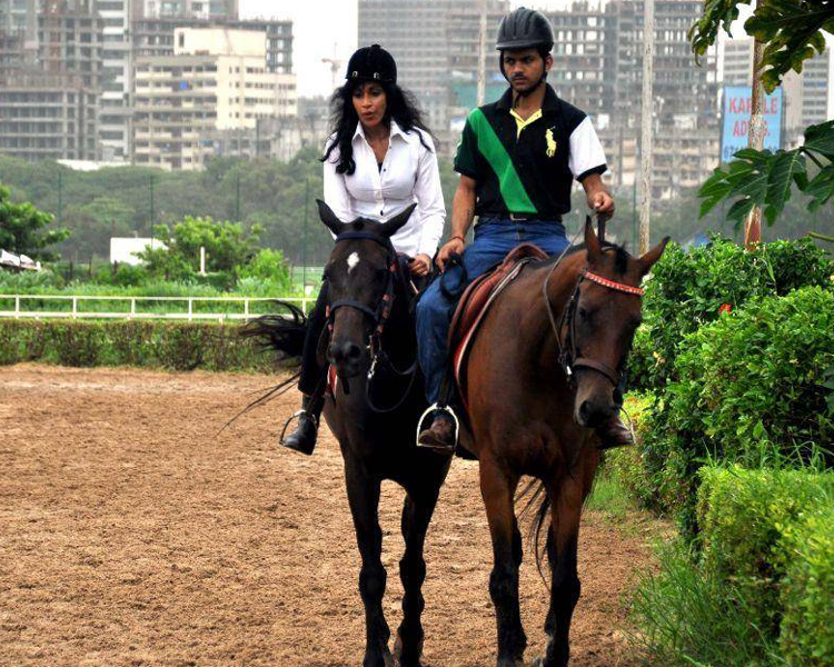 HORSE RIDING SESSIONS