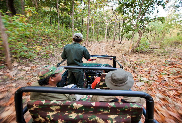2N/3D TOUR TO SATPURA NATIONAL PARK