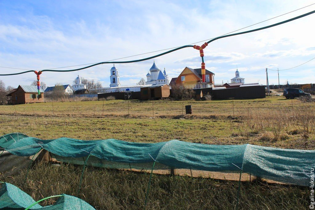Переславль залесский ферма улиток