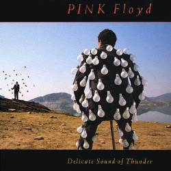 A delicate sound of thunder pink floyd
