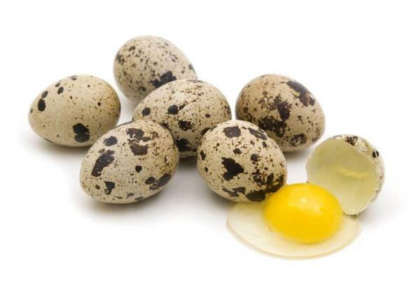 Сколько грамм в 1 яйце перепелином яйце