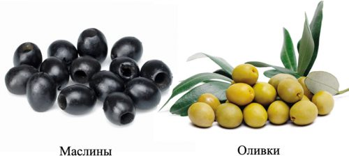 Маслины при похудении