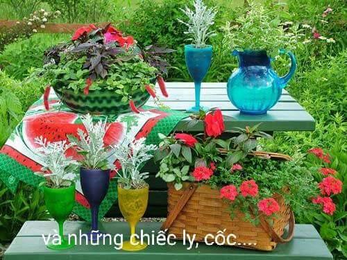 Cách tận dụng đồ cũ để làm mới khu vườn nào.... Xem xong làm luôn