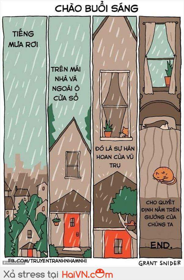 Mỗi khi trời mưa