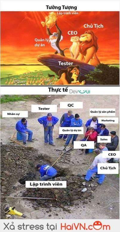 Chỉ lập trình viên mới hiểu