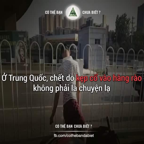 Năm 2010, một bà cụ đến từ Nantong đã bị kẹp cổ chết ở hàng rào trên đường.  Năm 2013, một cô...