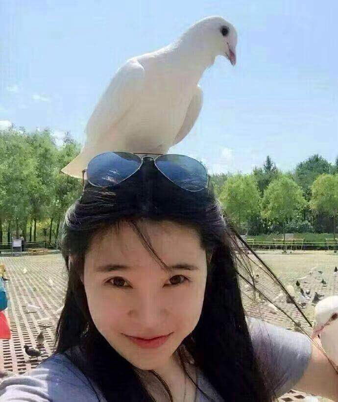 Chụp hình cùng chim. :v