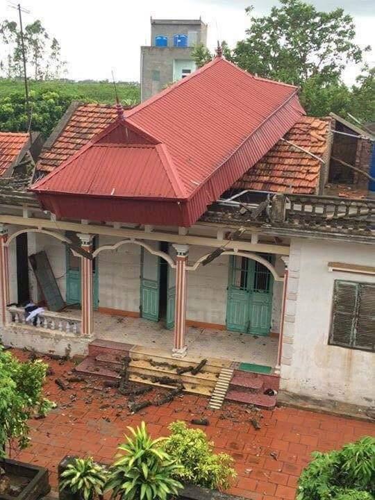 Mới thêm cái mái tôn sau cơn bão. :v  Ảnh: Thai Vu Nam  #Méo ăn cắp