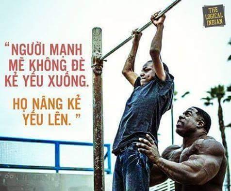 Kẻ mạnh không phải là kẻ dẫm đạp lên đôi vai người khác để thỏa lòng ích kỷ. Kẻ mạnh phải là...