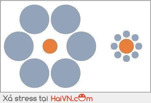 Đố các mem hình tròn cam nào to hơn :v