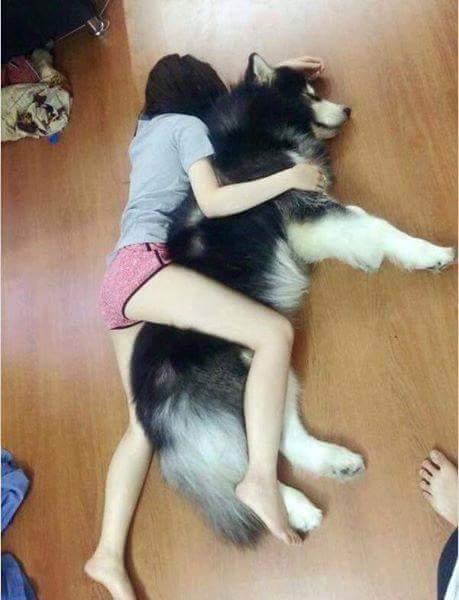 Mình éo bằng con chó.