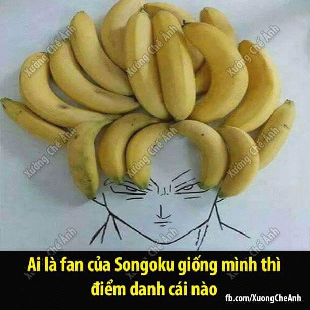 Fan của anh Ku nào