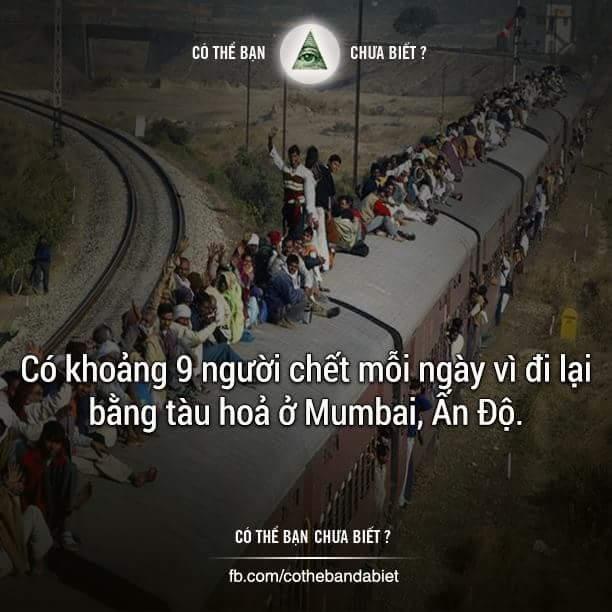 Tai nạn phổ biến đến nỗi mà nhà ga nào cũng luôn dự trữ những tấm phủ trong kho để phủ lên...