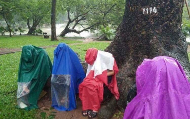 Đội mưa đi bắt pokemon. :3