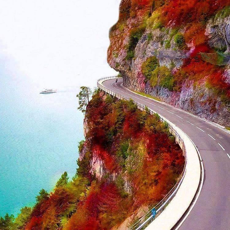 Con đường tuyệt đẹp -