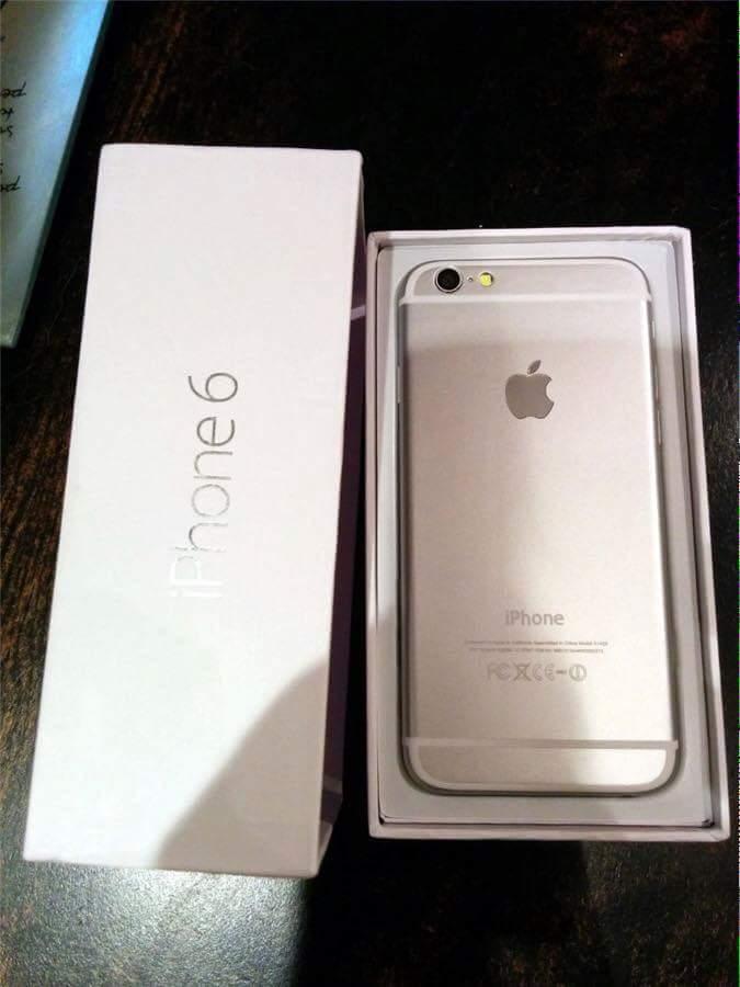 Cày cuốc cả năm trời mới mua được con iPhone 6. :3