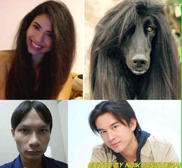 1 kiểu tóc 2 số phận. :v