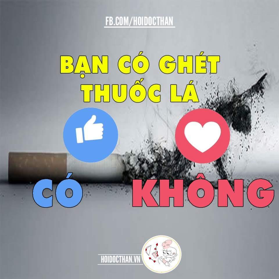 Bạn có ghét thuốc lá
