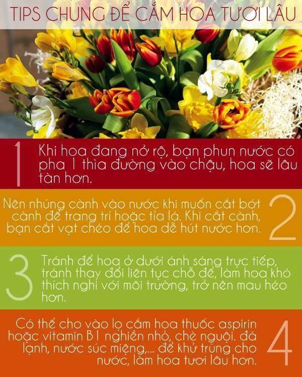 Mẹo cắm hoa lâu