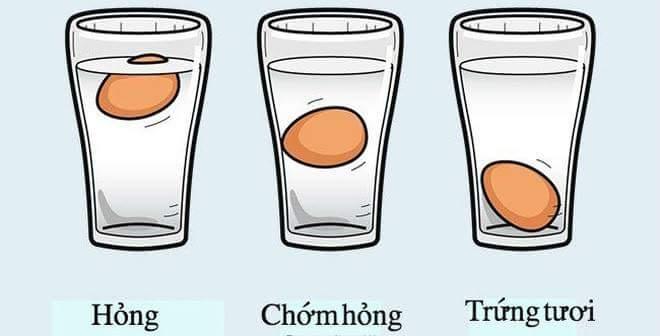 MẸO PHÂN BIỆT TRỨNG HỎNG VÀ TRỨNG TƯƠI:   Thả trứng vào một chiếc cốc nước lạnh. Nếu trứng...