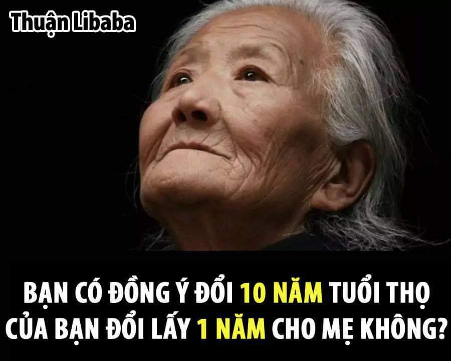 Bạn có đồng ý không?  Thuận