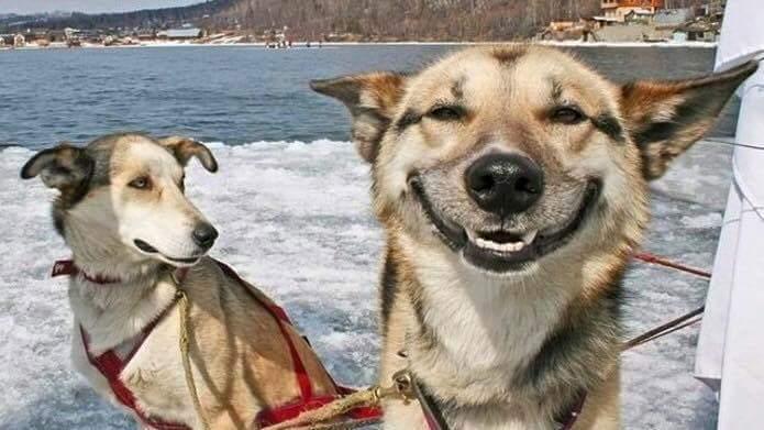 Lets smile :v  Ảnh nguồn: