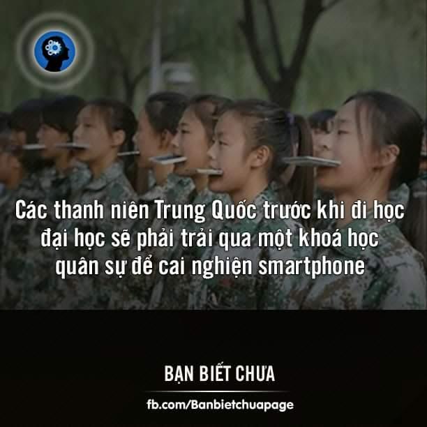 Khóa học này nên được triển khai ở Việt Nam.