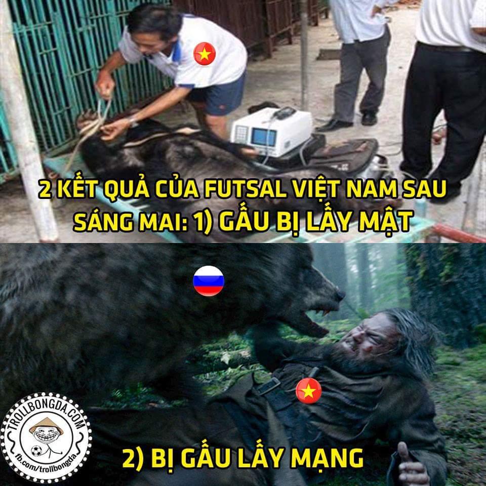 Nhắc nhỏ cho các bạn gấu Nga biết Việt Nam là nước khai thác mật gấu nhiều bậc nhất thế giới...