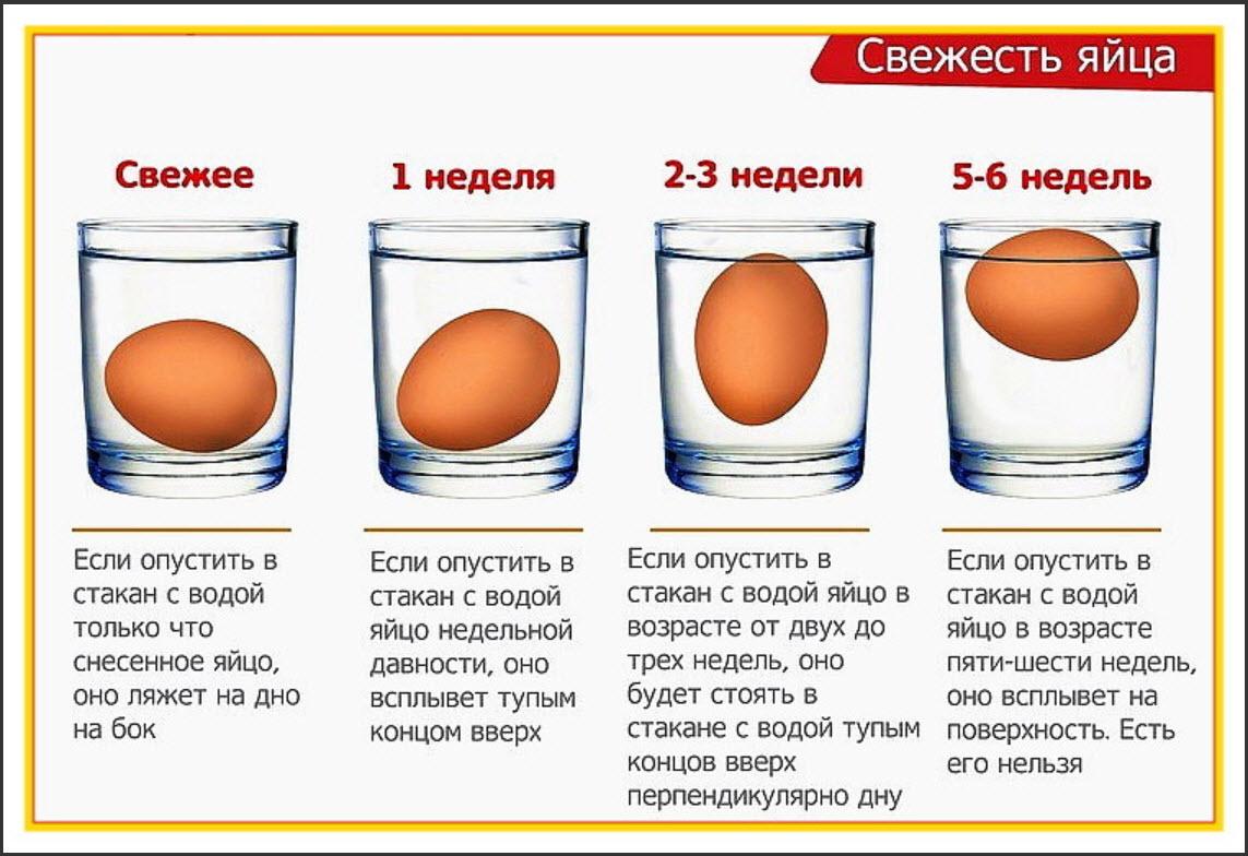 Свежесть яиц в воде картинка