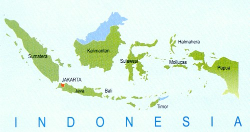 Cutting Through the Red Tape in Java