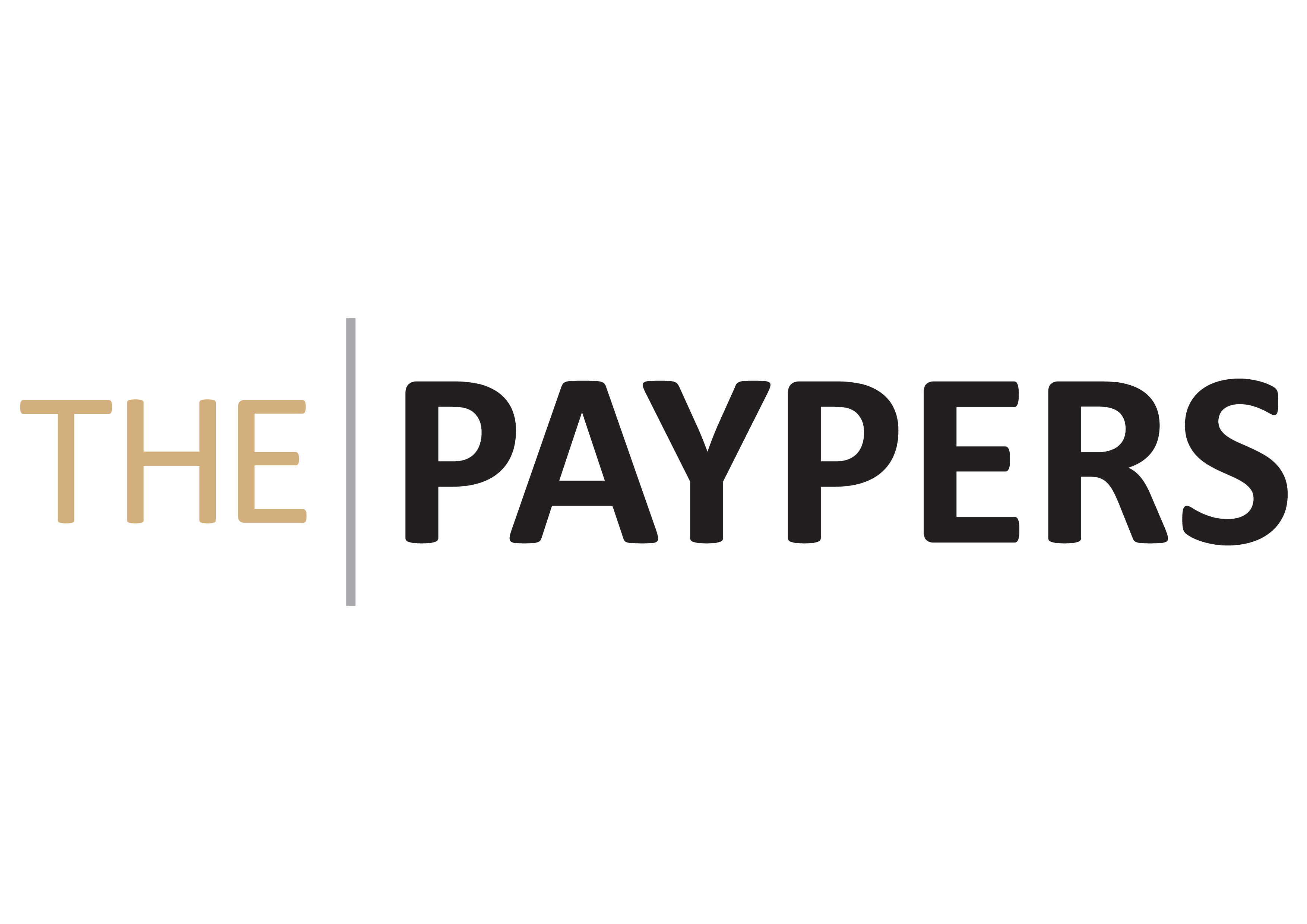 The Paypers banner