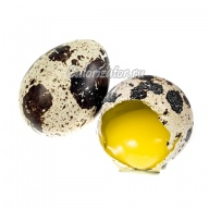 Калорийность яйцо перепелиное вареное