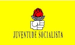 Bandeira da Juventude Socialista