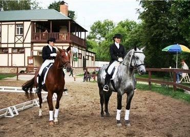 Бизнес план конно спортивного клуба