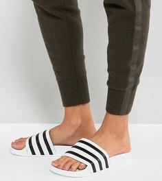 Белые сандалии adidas Originals Adilette - Белый