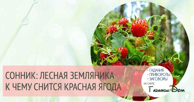 К чему снится красная ягода земляника