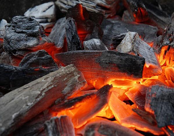 Бизнес план производство древесного угля