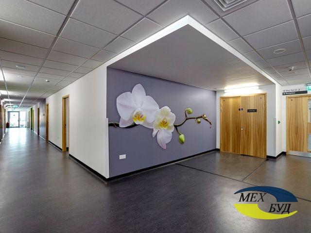 potolki-podvesnye-ofisnue подвесной потолок - 592030196c899 suspended ceiling 5 x7qym5 - Подвесные потолки для офисных и административных зданий