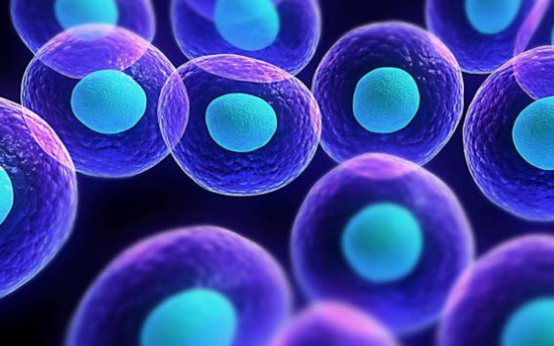 Hyperbaric Oxygen Therapy and Regenerative Medicine