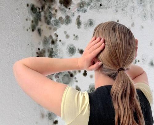 Как избавиться от повышенной влажности в квартире