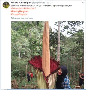 Bunga Bangkai @puspitayn19