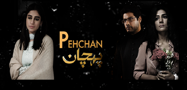 Pehchaan Episode 15 on Aplus Drama 24th July 2014