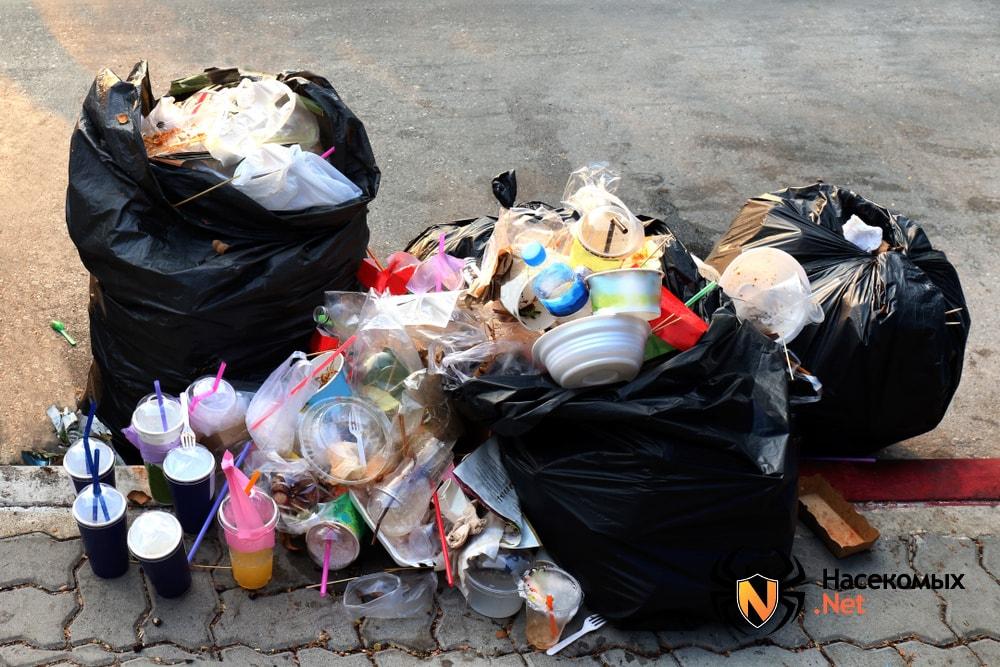 Свалки мусора привлекающие мух