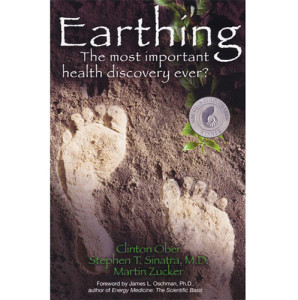 Earthing Book 4