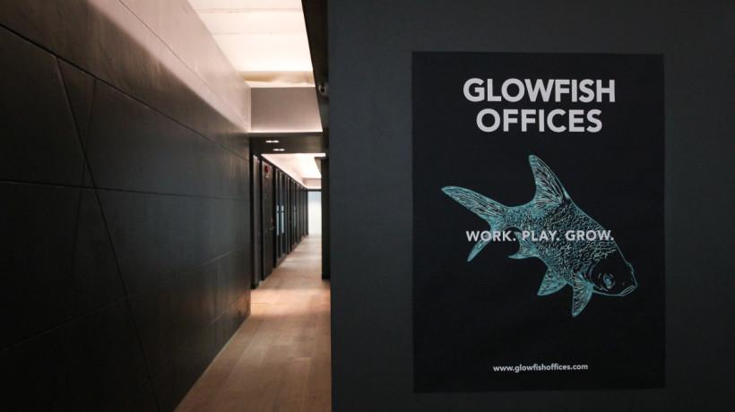 Glowfish Siam