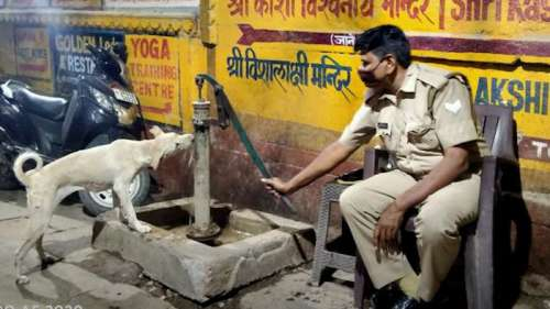 Cop feeds water to stray dog