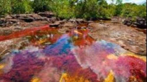 कोलंबिया की ये झील है इंद्रधनुष के रंगों वाली झील